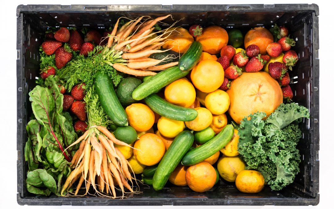 Dlaczego powinniśmy codziennie jeść warzywa i owoce?